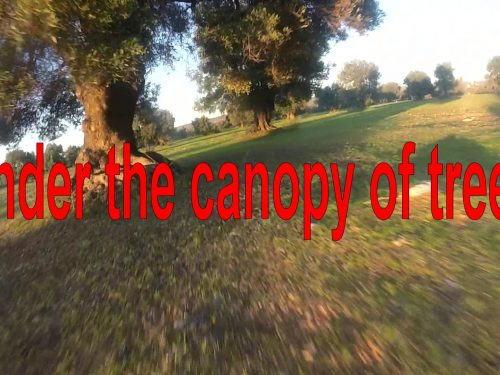 """Eachine Racer 250. Pid used in video """"under the canopy of trees"""""""